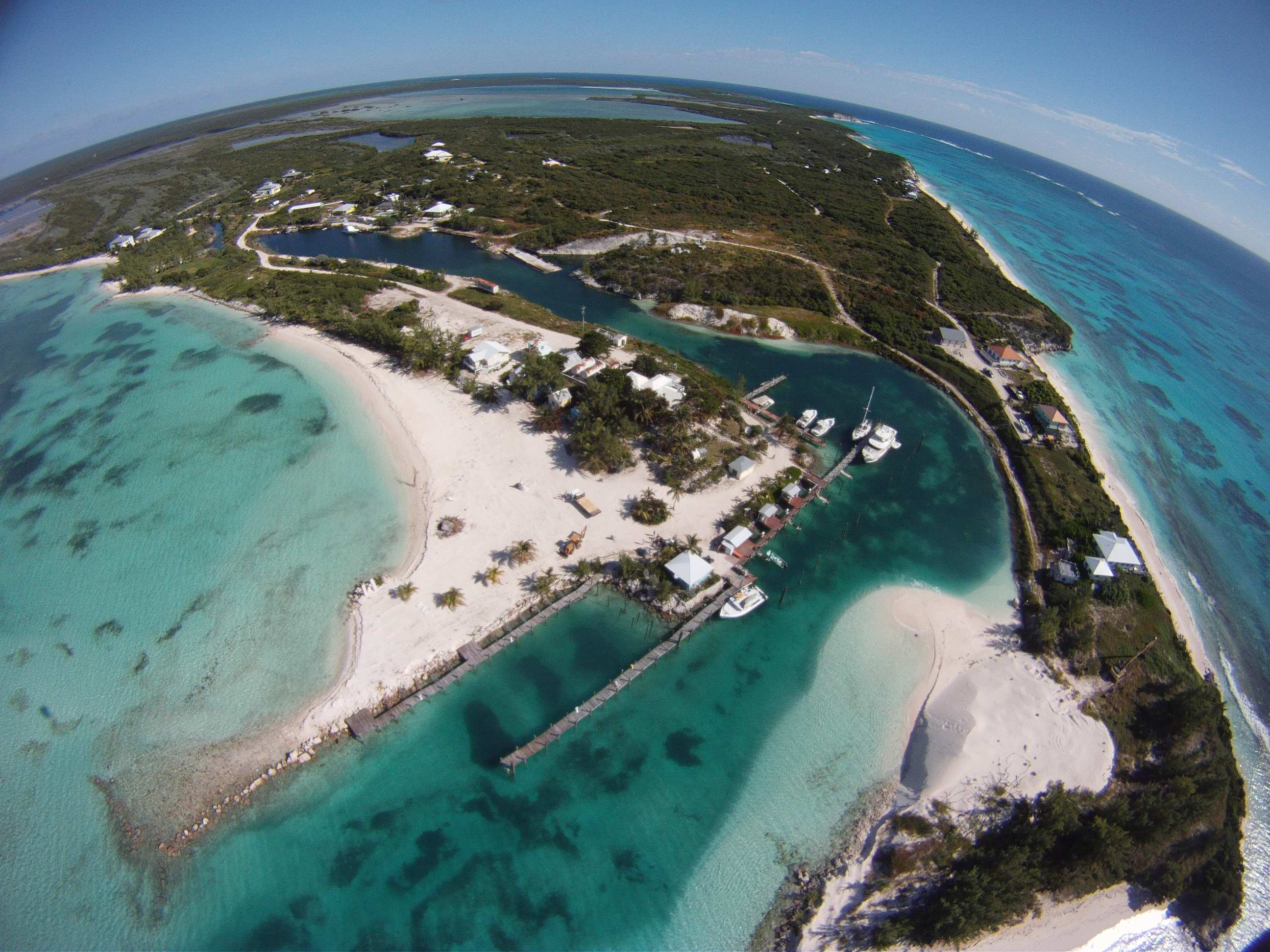 Newest Guy Harvey Outpost Club To Open On Rum Cay Bahamas furthermore chart House together with  in addition Tilikum SeaWorld Puts Dangerous Whale Killed Trainer Show furthermore Flanigans Seafood Bar And Grill Davie. on fish in fort lauderdale